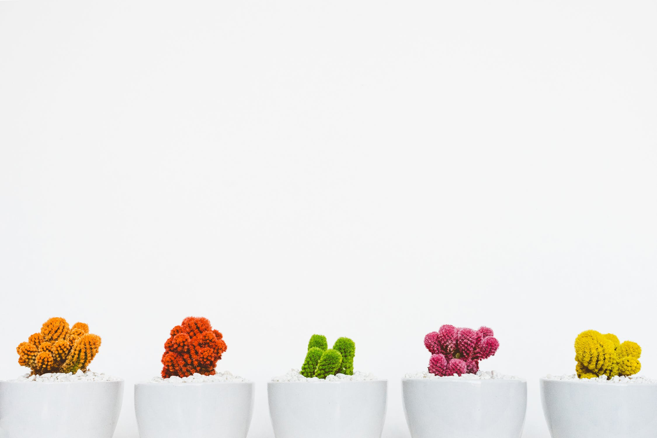 Grow your people and the rest will follow - Psycruit Psychometric assessments